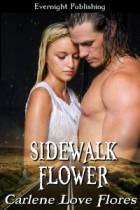 sidewalk-flower-cover