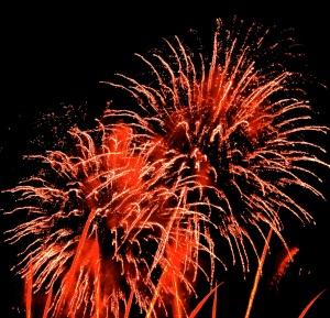 Firework Congratulations
