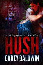 hush-by-carey-baldwin-ebooklg-e1373254420916
